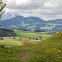 Просторы Швейцарии :: Оксана fmc☮driver