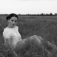 на лугу созрели травы.. :: Vitali Sheida
