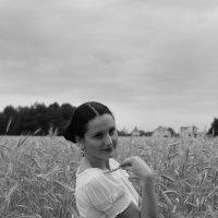 хлеба зреют.. :: Vitali Sheida
