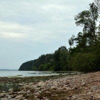 Каунасское Море II :: Kliwo