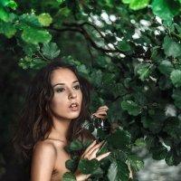 Fairy :: Vitaly Shokhan