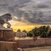 Страж заката :: Лариса Шамбраева