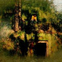 Заброшенный бункер. :: Виталий Виницкий
