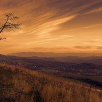 В мире одиночества... :: Владимир ( bhagaban )