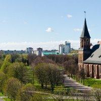 Весенний Калининград :: Ирина Шарапова