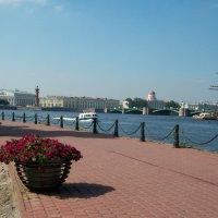 Санкт-Петербург. :: Жанна Викторовна