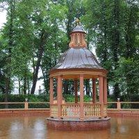 Беседка на пруду и дождь :: Aнна Зарубина