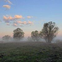 За туманом :: Сергей Михайлович