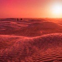 Закат в Сахаре :: Илья Шипилов