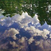 Облака в реке :: Юрий Стародубцев