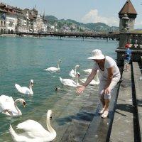 Люцерн Швейцария :: валерий капельян