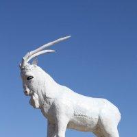 по дороге в Джаркент :: елена миштна