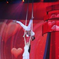 Воздушные гимнасты. Сергей и Мария. :: Иван Бобков