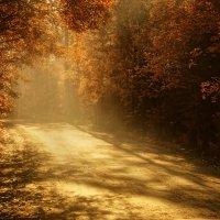 Золотая осень :: Алена Николаева