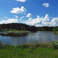 Пейзаж с озером :: Игорь Задворняк