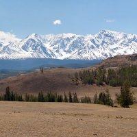 Северо-Чуйский хребет весной :: Максим Блинов