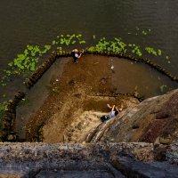 Взгляд с моста :: Татьяна Копосова