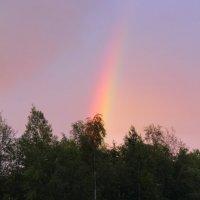 Вечернее небо :: Aнна Зарубина