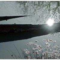Солнце на борту :: Кай-8 (Ярослав) Забелин