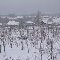 Деревня в Январе. :: Олег Романенко