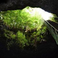 Пещера ''Стълбицата'' :: Светлана Германова