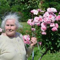 Бабушка - одуванчик :: владимир козленок