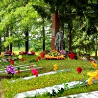 22 июня братское кладбище. :: Сергей Кочнев