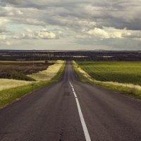 Дорога дальняя... :: лиана алексеева