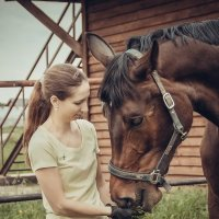Horse :: Мила Семенова