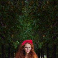 фея :: жанна лукашевская
