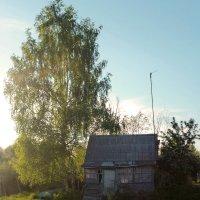 одинокий домик :: Женя Релье