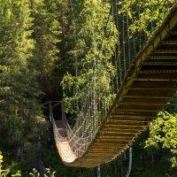 hinged bridge :: Dmitry Ozersky