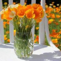 Цветы в саду :: Mariya laimite