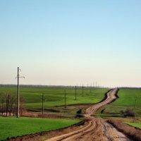Ноябрь,дорога среди полей... :: Тамара (st.tamara)