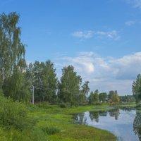 Река Сучок :: Михаил (Skipper A.M.)