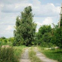 Дорога :: Виктория Власова