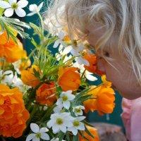 Аромат полевых цветов :: Виктория Темникова