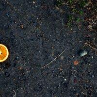 Оранжевое счастье :: Виктория Темникова
