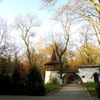 В парк на прогулку... :: Тамара (st.tamara)