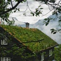 Домик в деревне... :: Светлана Игнатьева