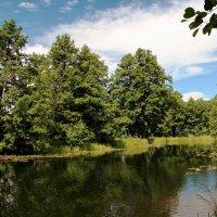 Природа у реки :: Юрий Стародубцев