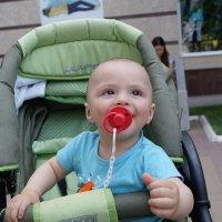 Малыш-крепыш :: Наталья Жеребецкая