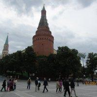 Вид на башню Кремля :: раиса Орловская