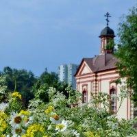 Цветы на Троицу :: OLCEN Лен