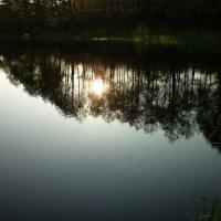вечер у озера :: Oxi --