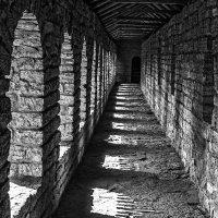 На стенах крепости Орешек :: Владимир Горубин