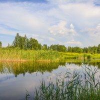 Летние берега :: юрий Амосов