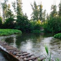 При взгляде с мостика на речку Каргала :: Vladimir Beloglazov