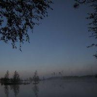 Туман июльским утром... :: Павел Зюзин