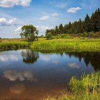 Озеро :: Дмитрий Беляков